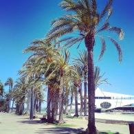 Yacht club - Santiago de la Ribera